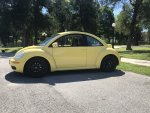 My New Beetle